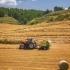 AGRICOLTURA Pnrr, grande opportunità per l'agroalimentare ma serve intervento su più fronti