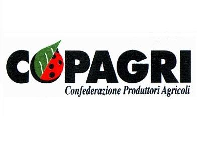 Pac 2016, Copagri diffida Agea per disfunzioni sistema informatico