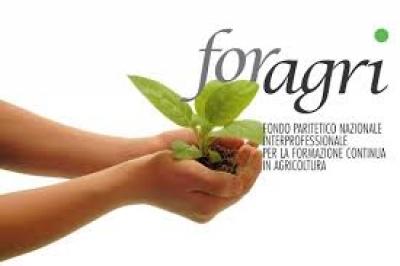Risorse 2015 per promuovere l'agricoltura sociale